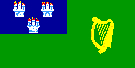 City of Dublin Flag